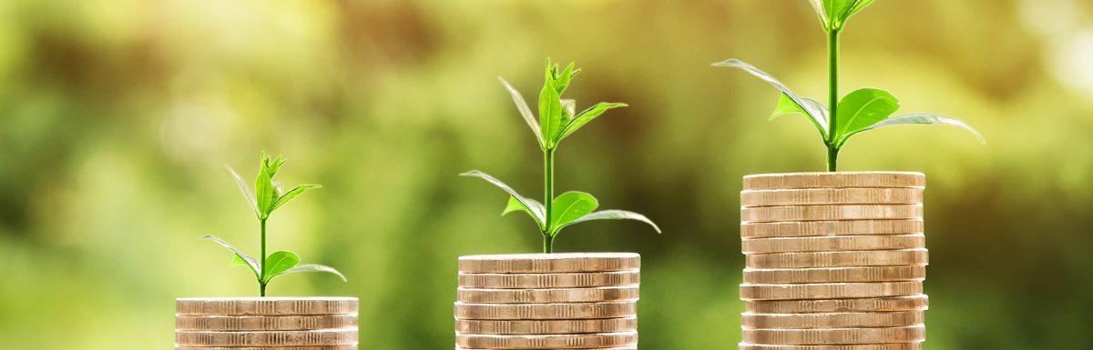 Top 5 tips for managing cash flow